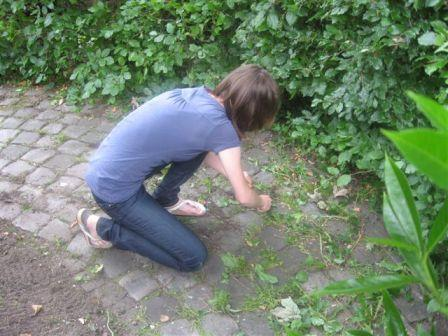 coeheijde6juni2010006web