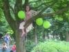 coeheijde6juni2010023web
